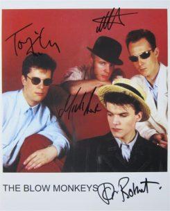 Blow Monkeys Signed Photo
